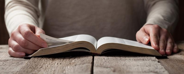 Grow into who God would have you to be with the help of online bible studies