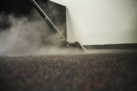 Why are professional carpet cleaning services important for your business