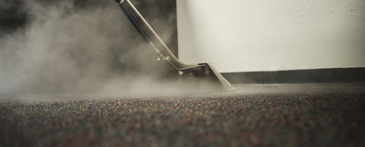 Why are professional carpet cleaning services important for your business?