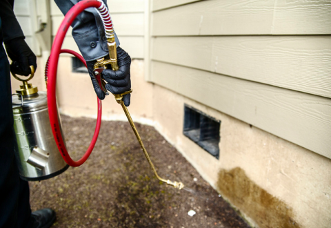 Is pest control financially sustainable on a rental property