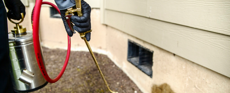 Is pest control financially sustainable on a rental property?